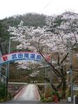 Takedao04092011_04.JPG
